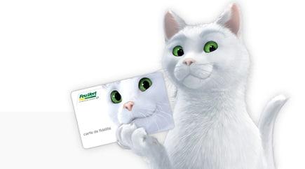 Carte fidélité Feu Vert