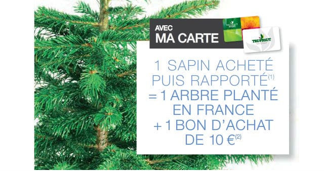 sapin de no l truffaut 10 en bon d 39 achat 1 arbre plant. Black Bedroom Furniture Sets. Home Design Ideas