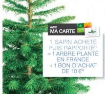 Sapin de Noël Truffaut = 10€ en bon d'achat + 1 arbre planté